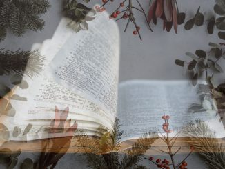 Open bible overlaid over Christmassy background with holly, etc.